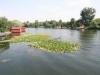 lacul-snagov-16