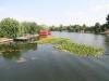 lacul-snagov-17