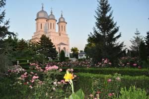 Manastirea Saon