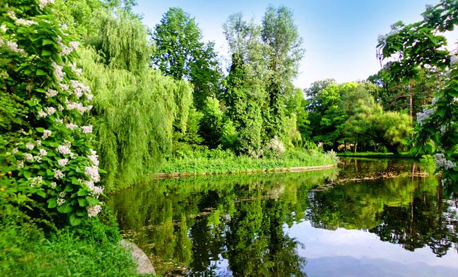 Gradina Botanica din Bucuresti - flickr