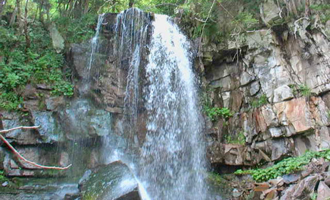 cascada-misina-din-comuna-nistoresti-biodiversitate