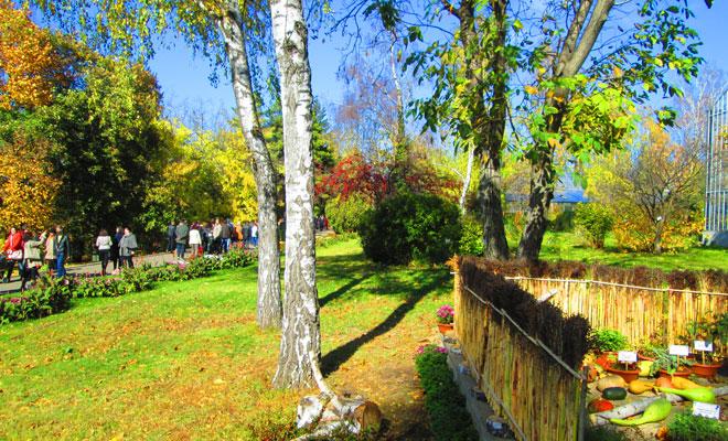 gradina-botanica-din-orasul-iasi-flickr