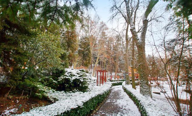 gradina-botanica-din-orasul-targu-mures-romaniaverde