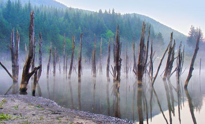 lacul-cuejdel-din-comuna-garcina-flickr