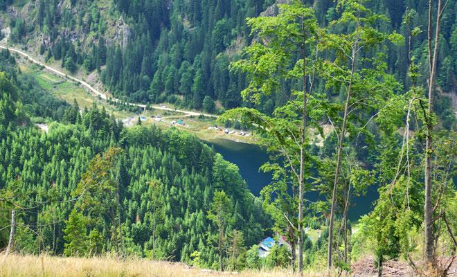 lacul-de-acumulare-petrimanu-din-judetul-valcea-flickr