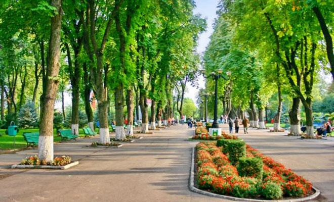 parcul-copoi-din-orasul-vaslui-adevarul