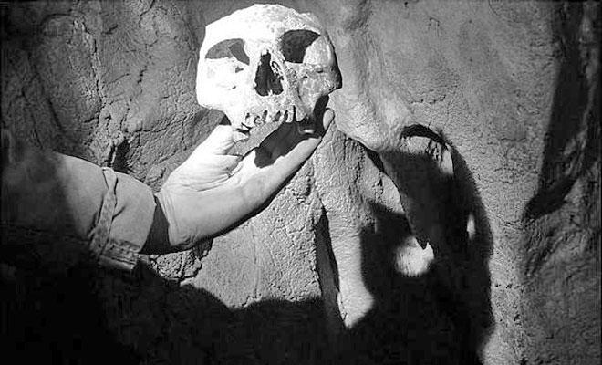 Pestera cu Oase din comuna Bozovici - wikimedia