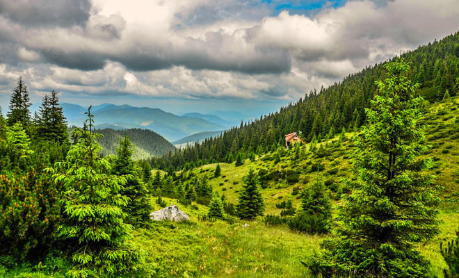 Parcul National Calimani din judetele Mures Suceava Harghita si Bistrita-Nasaud - flickr
