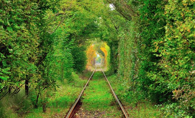 Tunelul-iubirii-din-Glimboca,-judetul-Caras-Severin
