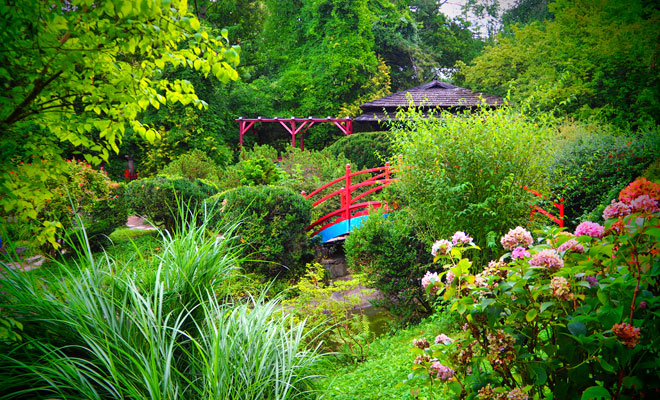 gradina-botanica-din-orasul-cluj-napoca-flickr