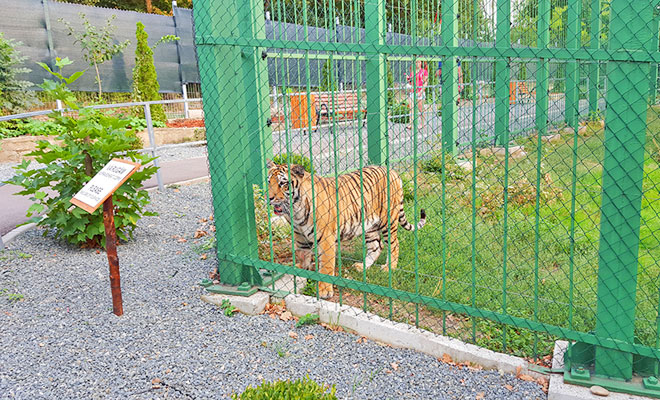 gradina-zoologica-din-orasul-galati-panabogdan