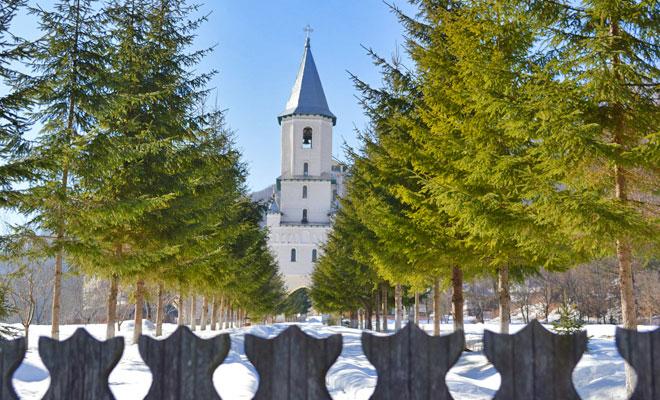 manastirea-nechit-din-comuna-borlesti-photobox