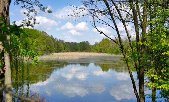 Lacul Valea Rosie din comuna Mitreni - facebook