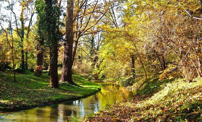 Parcul dendrologic Simeria din orasul Simeria judetul Hunedoara - flickr