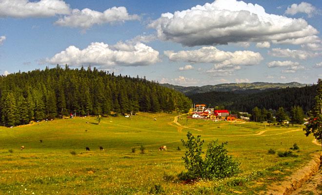 Statiunea Soveja din comuna Soveja judetul Vrancea - flickr