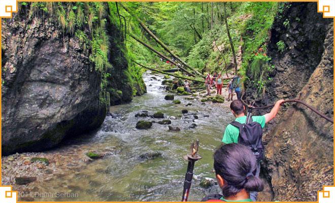 Obiective turistice din judetul Bihor - Cheile Galbenei