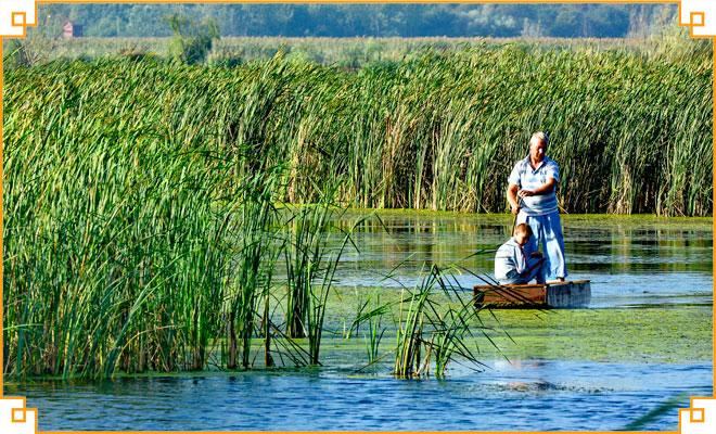 Obiective-turistice-din-judetul-Giurgiu---Parcul-National-Comana