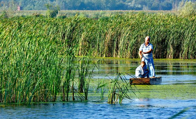 Parcul National Comana din judetul Giurgiu - flickr