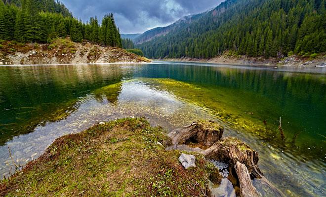 Lacul-Galbenu-din-comuna-Malaia,-judetul-Valcea