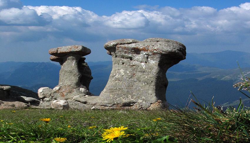monumente ale naturii